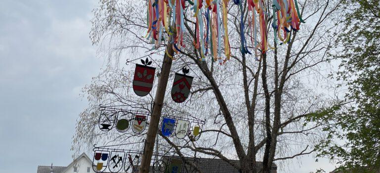 Maibaum wieder aufgestellt